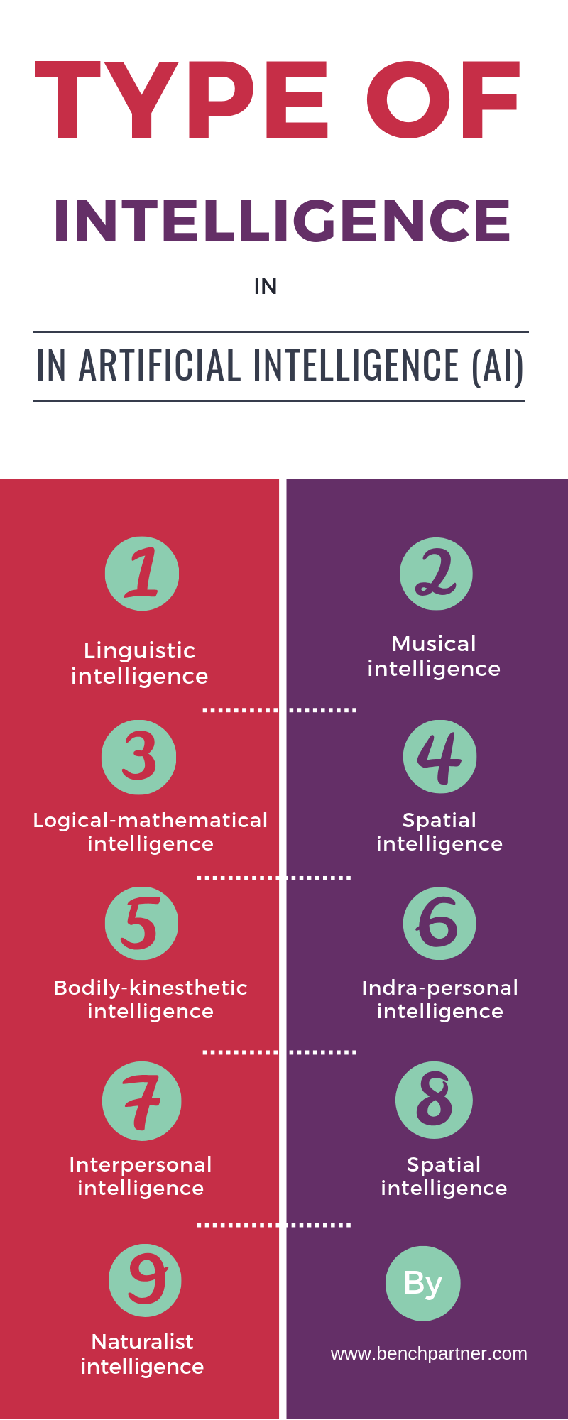 Types of Intelligence in Artificial Intelligence (AI)